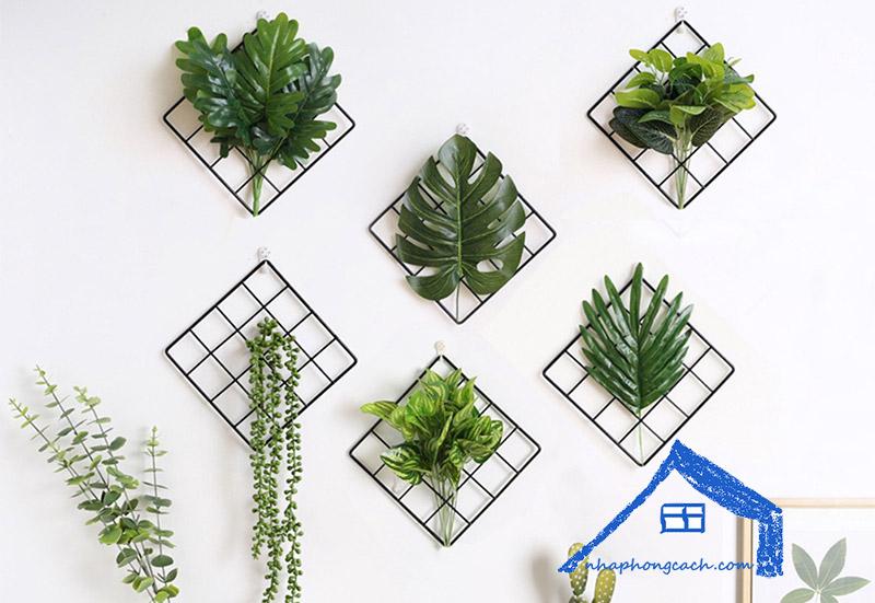 Cây-trồng-trên-tường-trong-nhà