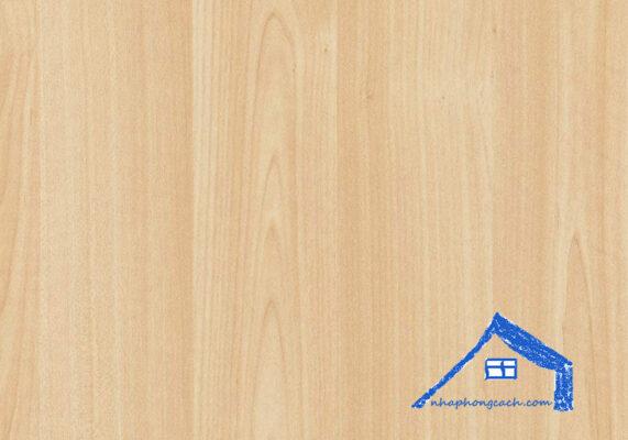 gỗ-maple