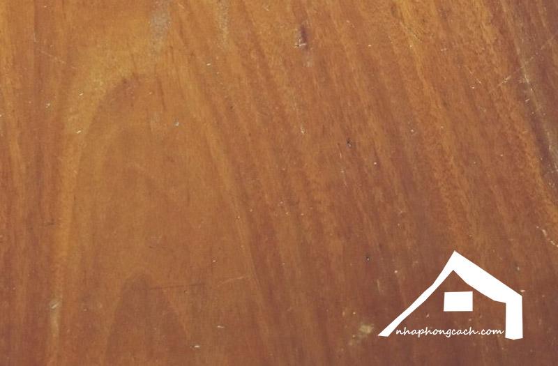 gỗ-sao-xanh