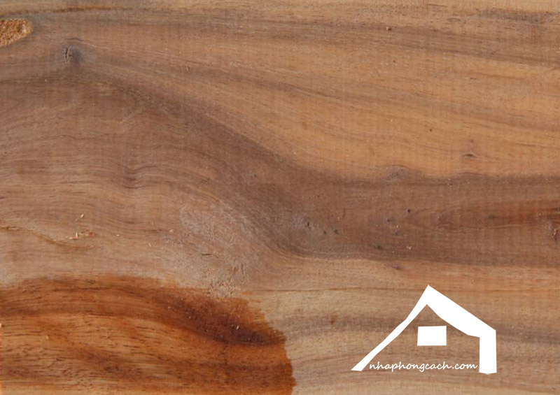 gỗ-tràm